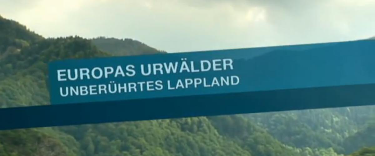 "ARTE: Europas Urwälder ""Unberührtes Lappland"""